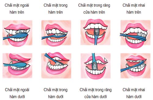 hướng dẫn chải răng đúng cách