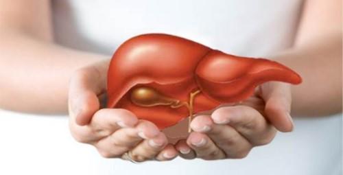 Cách ngăn ngừa hôi miệng từ nóng gan