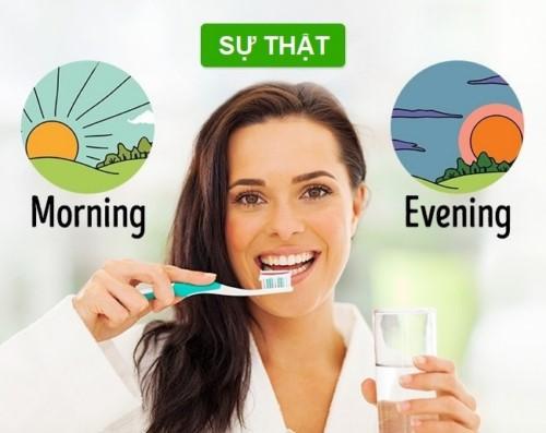 đánh răng như thế nào hợp lý