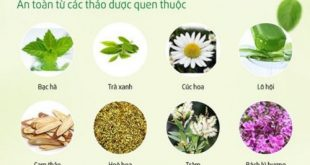 Hướng dẫn tự làm nước súc miệng từ thảo dược tự nhiên tại nhà