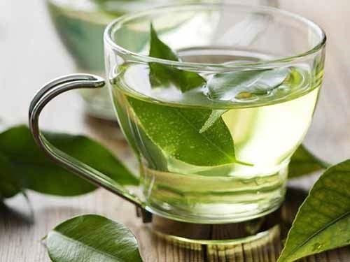 trà xanh trị hôi miệng