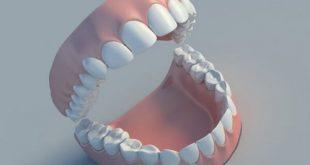 Một con người có bao nhiêu cái răng-